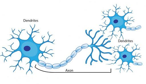 جزوه شبکه های عصبی دکتر منهاج